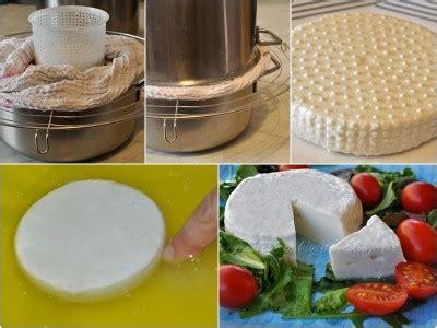 formaggio primo sale fatto in casa formaggio primosale fatto in casa passo passo 3a arte in