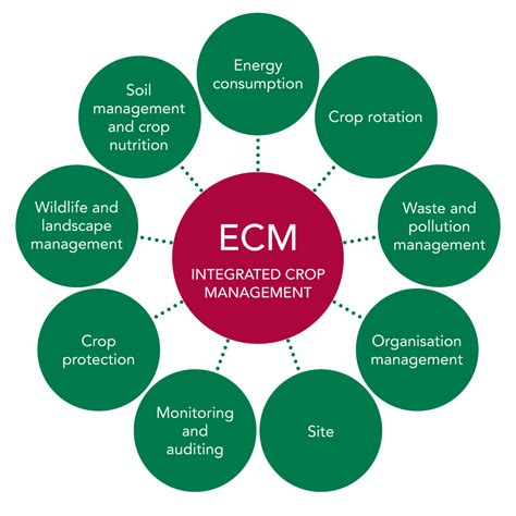 ecm diagram 28 images ddec iv wiring diagram series 60