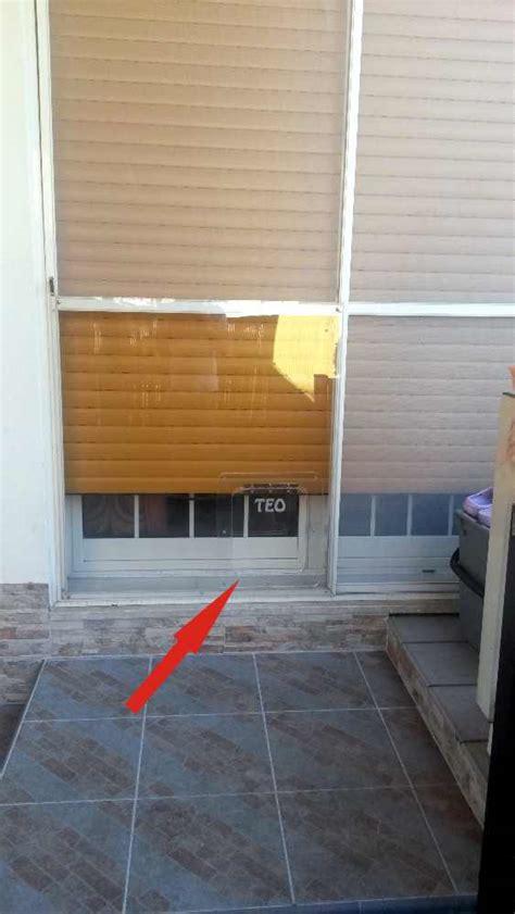 porta basculante per gatti porta basculante per cani e gatti in plexiglass dimensioni