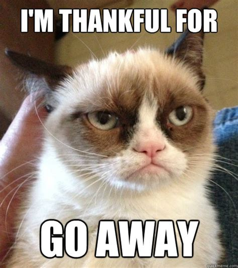 Go Away Meme - i m thankful for go away good day grumpy cat quickmeme