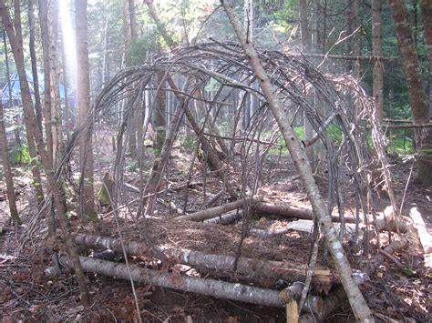 bush craft cing hazards pioneer bushcraft