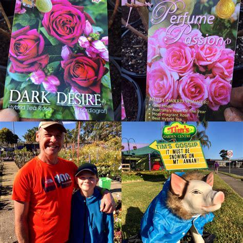 tims garden centre the most fragrant rose in australia jul 28 2017