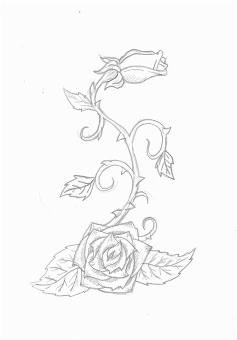 rose vine tattoo by infinitedamnation on deviantart