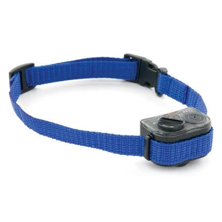 shock collar for dogs petsmart shock collars with remote pet photos gallery 4936zb63mo