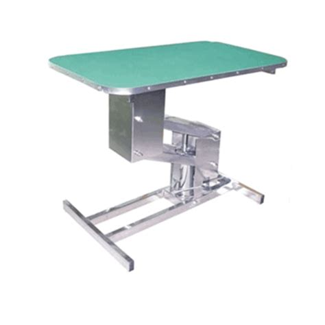 Pisces Table by Pisces Deluxe Professional Hydraulic Grooming Parlour Table With Arm Leash
