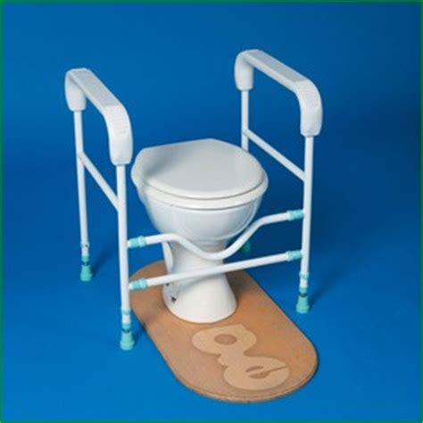 Bathtub Aids For The Elderly by Bathroom Aids For Elders Silver Talkies