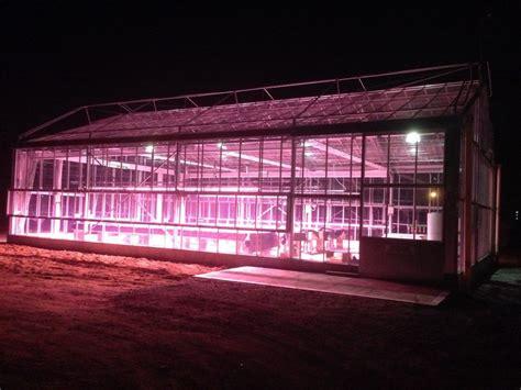 Valoya Led Grow Lights Optimised For Plant Production Greenhouse Lighting Fixtures