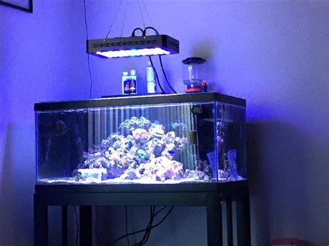 led lights for fish tanks best aquarium fish tank led lighting aqua led bit ly