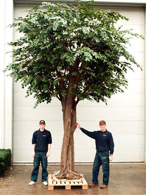 large artificial trees uk new developments in the fascinating world of large