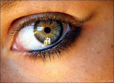 the rarest eye color eye color what are the rarest eye colors yahoo