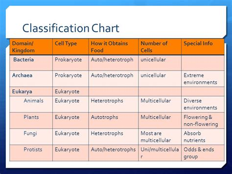 classification chart levels of classification ppt