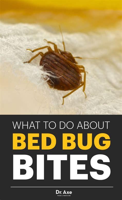 ideas  identifying bug bites  pinterest tick bite canker sore cure  insect bites