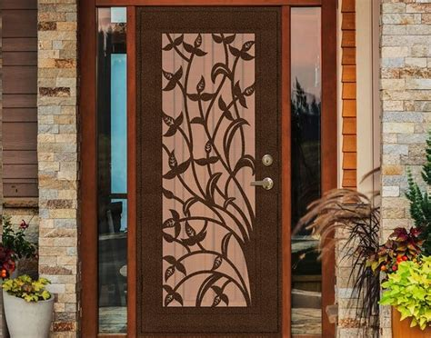 Decorative Security Screen Doors by Decorative Security Screen Doors What To Understand About