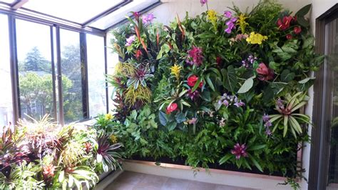 Best Vertical Garden System Plants On Walls Vertical Garden Systems June 2011