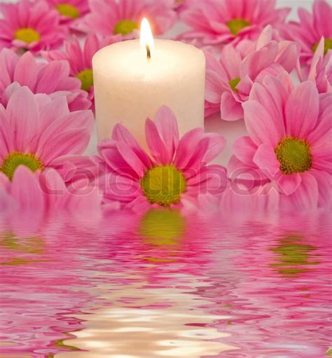 kerzenhalter blume candle and pink flower in a water stock photo colourbox