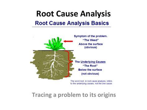 root  analysis
