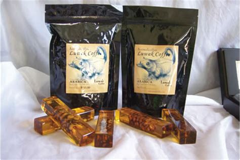top 5 most expensive teas in the world top10zen coffee 10 most expensive coffee