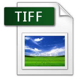 format gambar digital perbedaan format gambar ekstensi jpg gif png bmp dan tiff