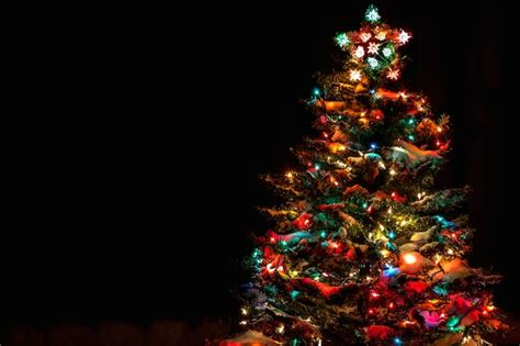 map 13 places to see a tree lighting in bed stuy dnainfo new york