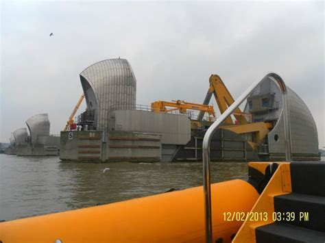 thames barrier festival thames barrier picture of rib tours london london