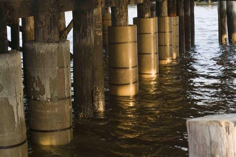 timber sheet pile wall timber pile sinomar pneumatic fenders marine rubber airbags