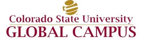 Csu Global Mba Accreditation by Top 20 Accounting Degree Programs