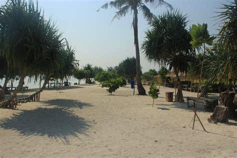 Pasir Putih Untuk Hewan menikmati pesona pantai pasir perawan di pulau pari indonesiakaya eksplorasi budaya di