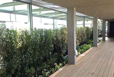 terrazza giardino pensile realizzazione giardino pensile per la terrazza della