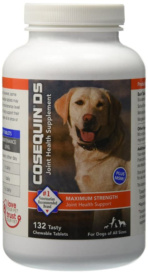 best joint supplement for dogs best joint supplements for dogs the top 5 picks