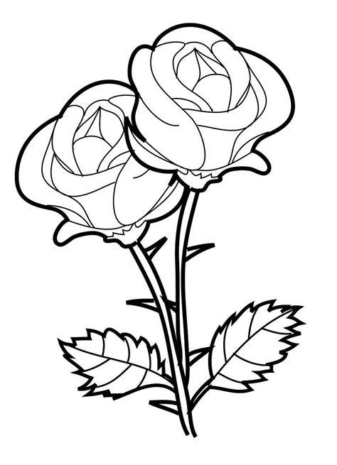 gambar bunga mawar hitam putih gambar mewarnai bunga mawar