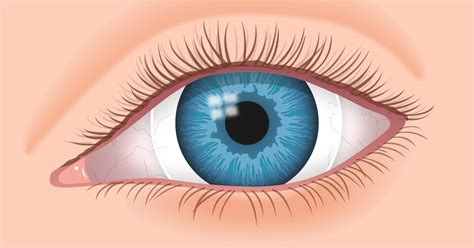 how much do colored contacts cost contact lenses for to fit allaboutvision