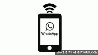 format gif whatsapp whatsapp gif find share on giphy