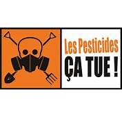 P&233tition Pour Dire STOP Aux Pesticides  VSF International