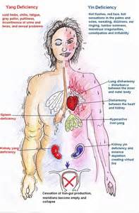 Chinese Herbs Menopause » home remedies news