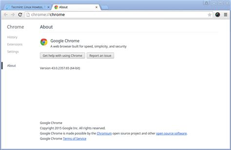 Download And Install Google Chrome 2014 | myideasbedroom.com