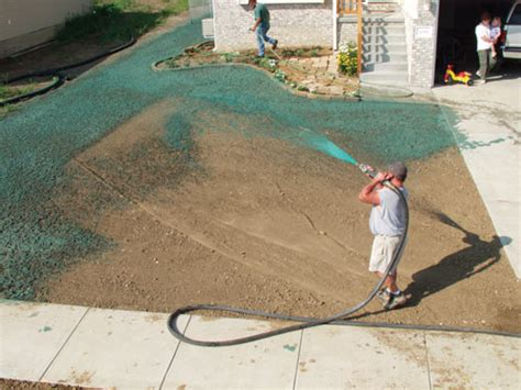 features vol 48 no 2 restoring the sand hill lakes