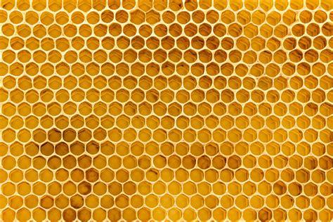 Wall Murals For Children honeycomb texture wallpaper mural murals wallpaper