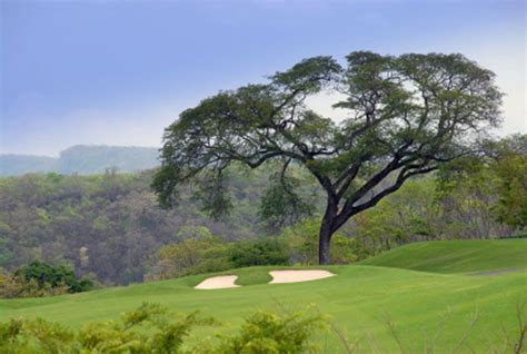 Gc Go Go Travel reserva conchal golf course photo go visit costa rica