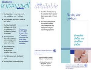 pamphlet template for breast feeding format of breast