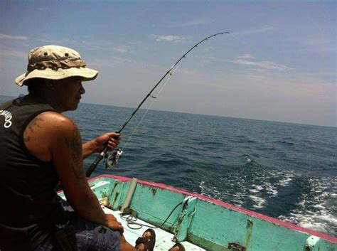fishing boat charter singapore boat charter in singapore and malaysia tell 6596630330