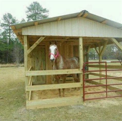 home grown living horse shelter diy horse barn small