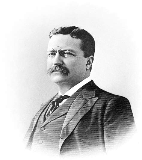 presidency of theodore roosevelt wikipedia the free file men of mark 101 theodore roosevelt png