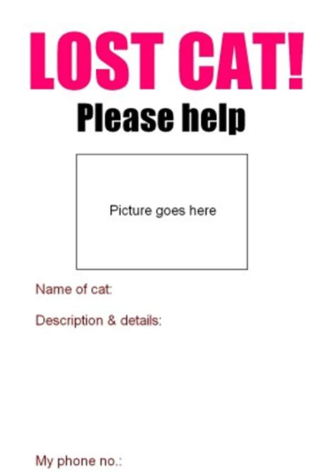lost poster template lost cat poster