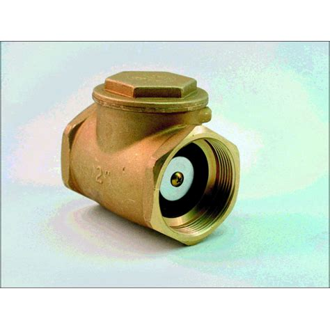 1 swing check valve swing check valve 2 1 2 quot