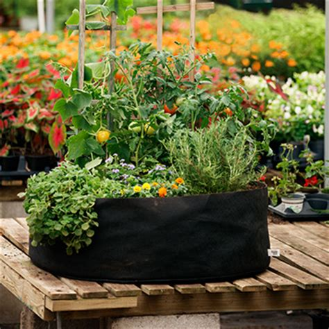 Michael Carr Planters by Flower Pots Bfg Supply