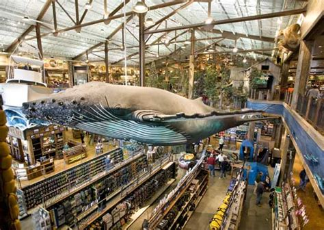 bass pro shop boat service hours foxborough ma sporting goods outdoor stores bass pro