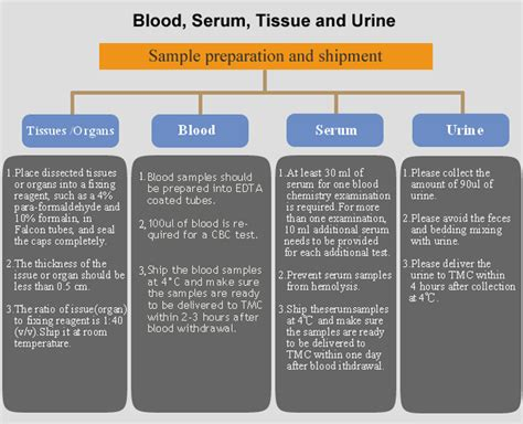 Blood And Tissue Detox Clinic by Welcome To Taiwan Mouse Clinic