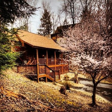 Eagle Ridge Cabins In Pigeon Forge Tennessee by Eagles Ridge Resort Updated 2017 Cottage Reviews Pigeon