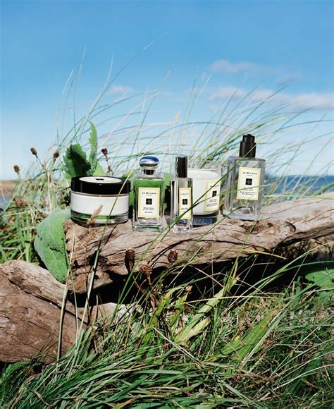 Parfum Original Jo Malone Wood Sea Salt Edc 100ml Unisex 33 best cologne images on cologne jo o meara