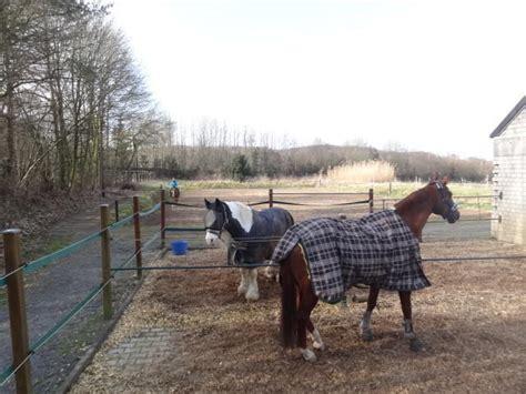 stall dortmund pferdeboxen in kleinem stall in do gro 223 holthausen mit